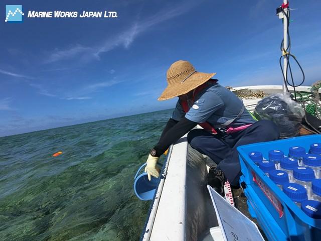 沿岸域における海水試料採取